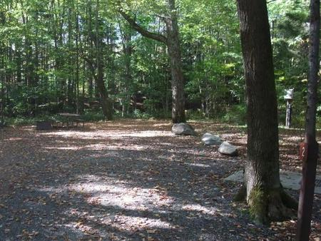 campsite with picnic table, fire ring and gravel surfacing in wooded areaCampsite 2