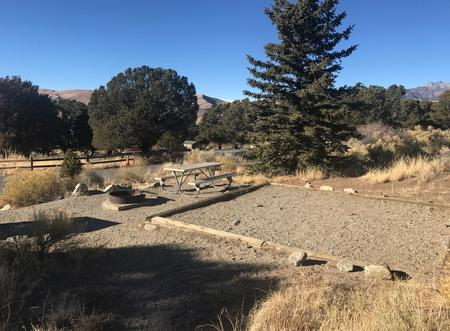 Site 7, Pinon Flats Campground