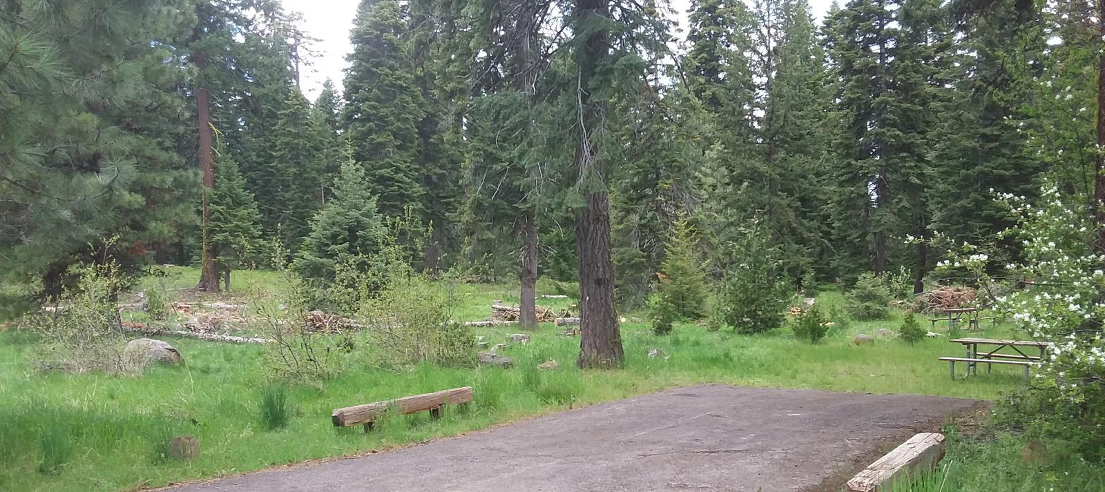 Campsite 1A Hyatt Lake