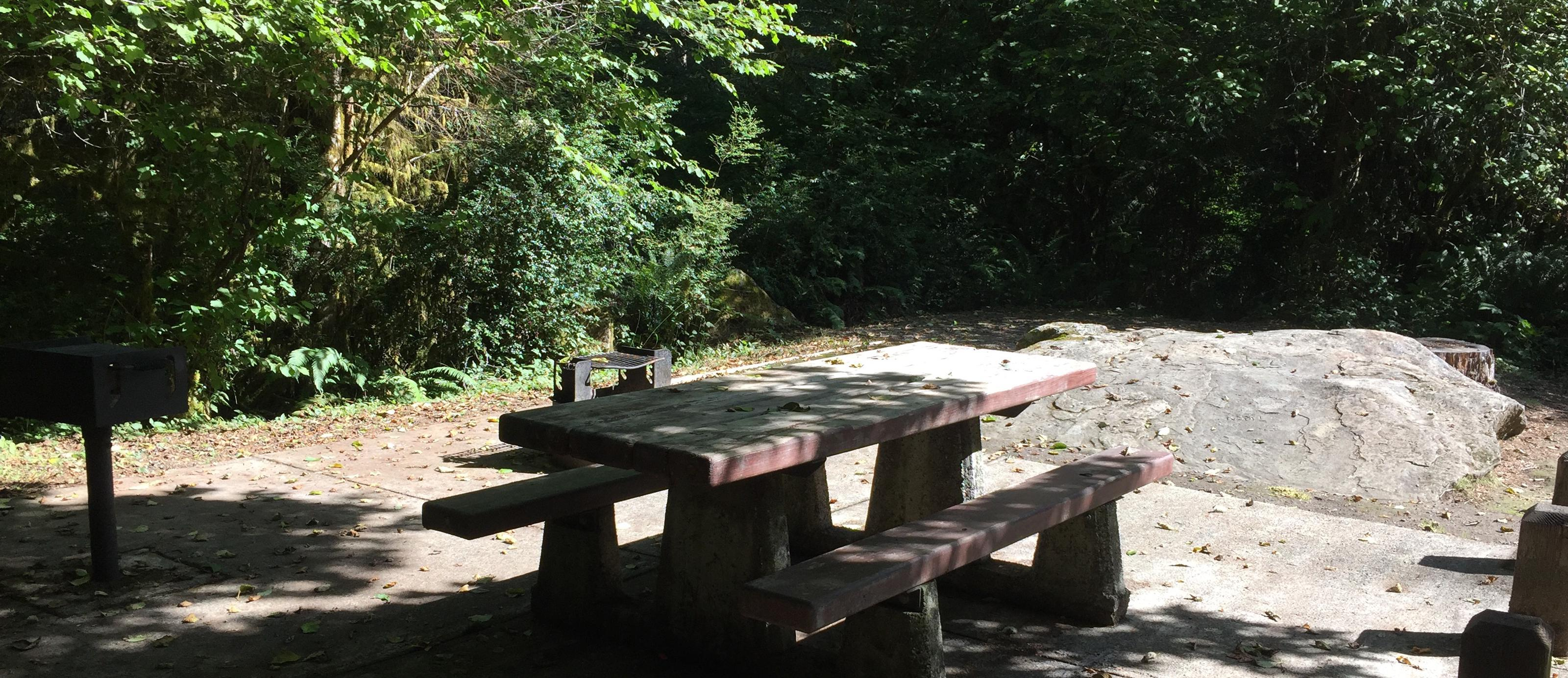 Picture of picnic table, fire ring, BBQ grill and tent pad.