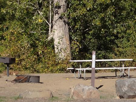Parking spot, picnic table, BBQ grill and fire ring at Roza Campsite #3