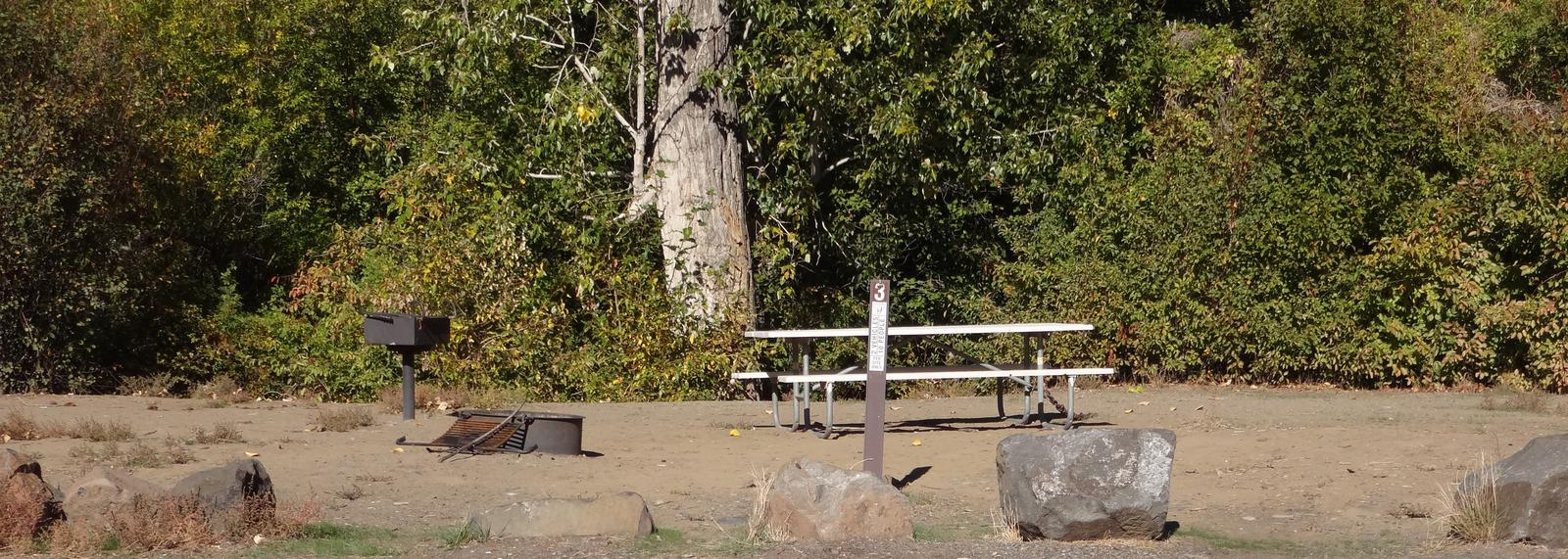 Parking spot, picnic table, BBQ grill and fire ring at Roza Campsite #3Roza campsite #3