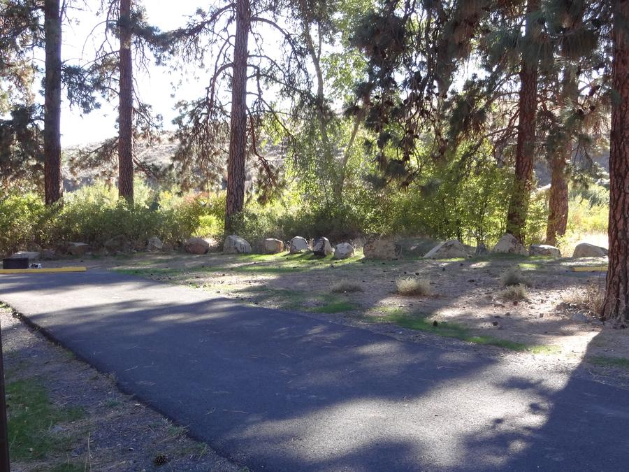 Parking pad and fire ring at Big Pines Campsite #3