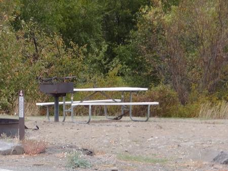 Parking spot, picnic table, BBQ grill and fire ring at Roza Campsite #4