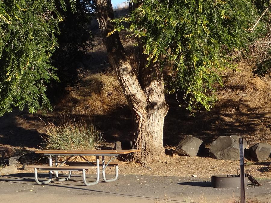 Parking spot, picnic table and fire ring at Lmuma Creek Campsite #6