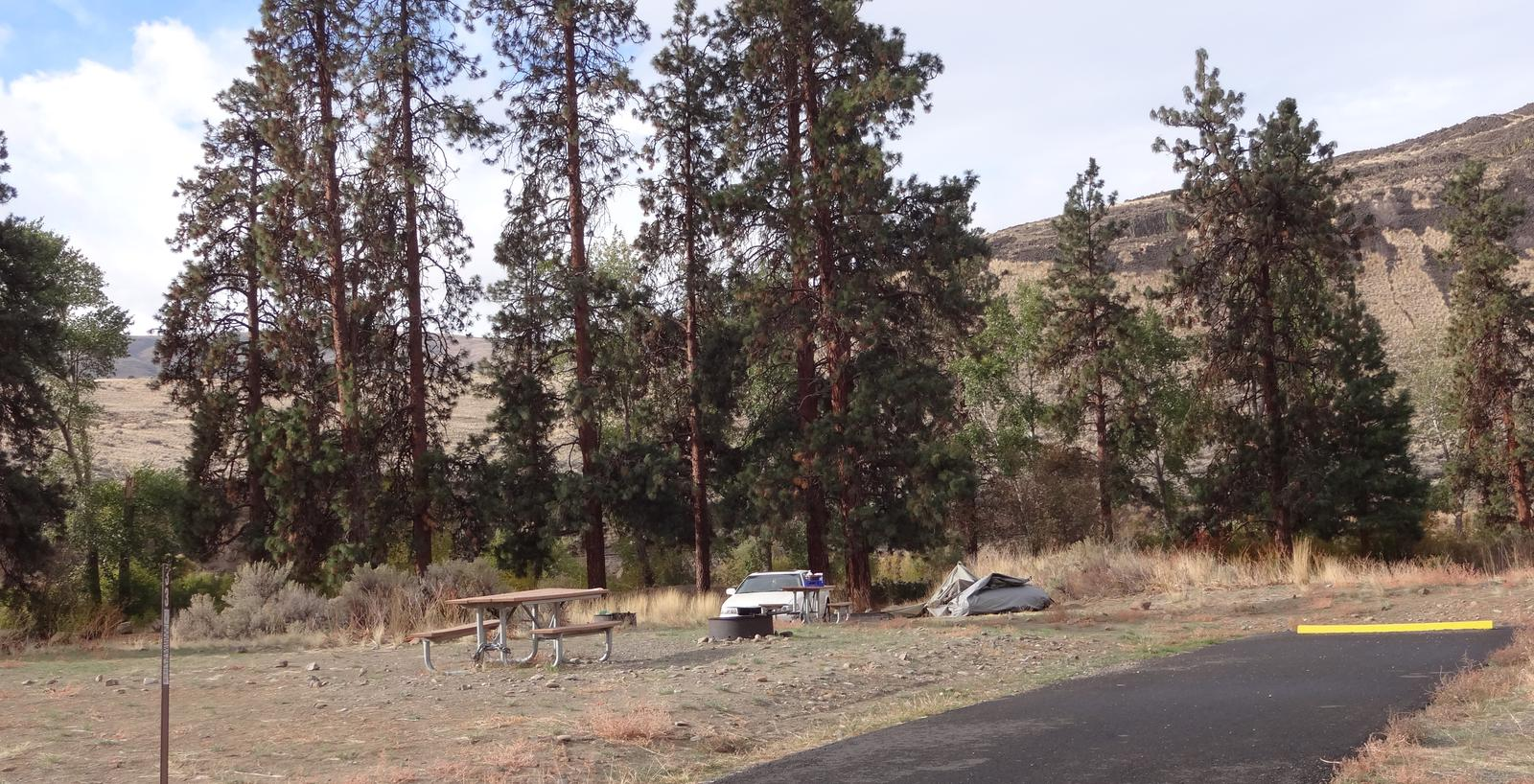 Parking pad, picnic table and fire ring at Big Pines Campsite #33Big Pines campsite #33