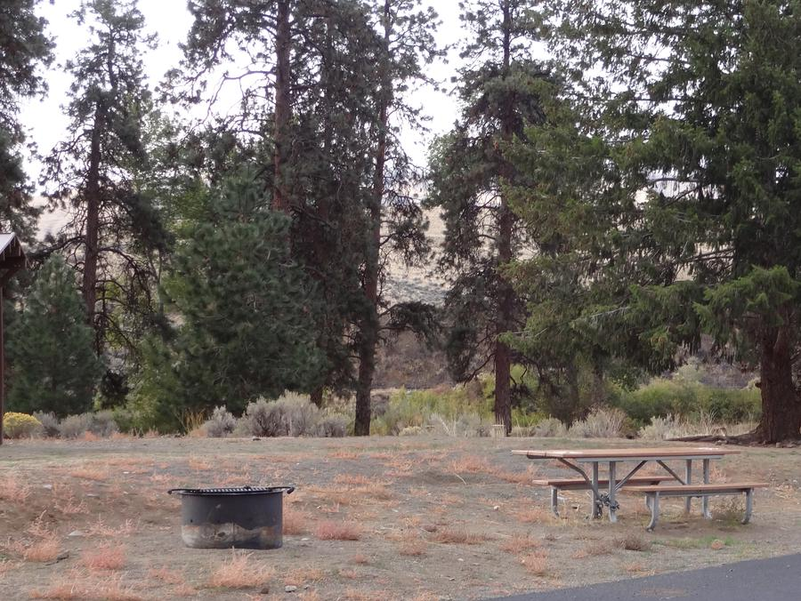 Parking pad, picnic table and fire ring at Big Pines Campsite #35