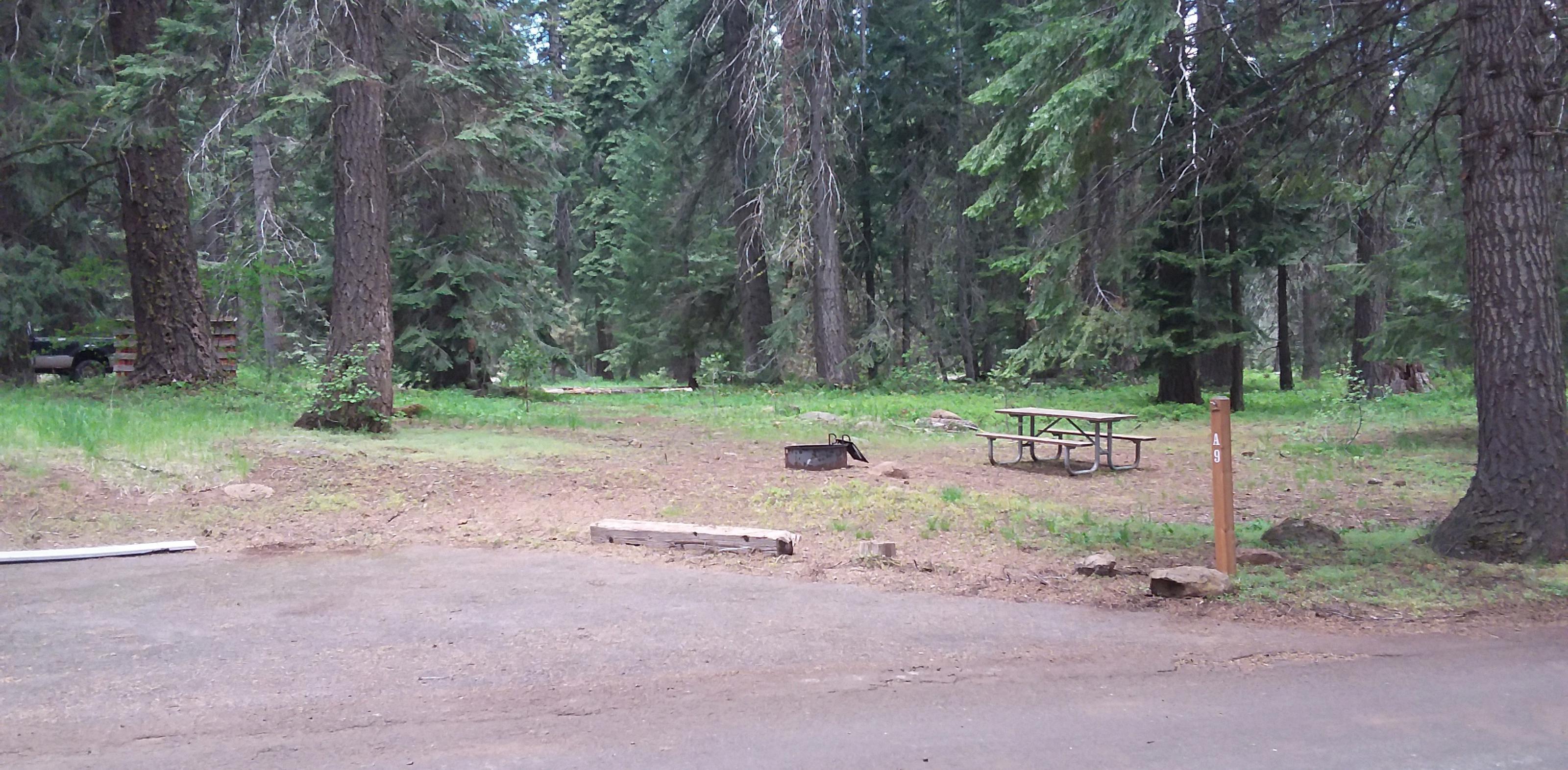 Campsite A9- Hyatt LakeCampsite 9, Loop A Hyatt Lake