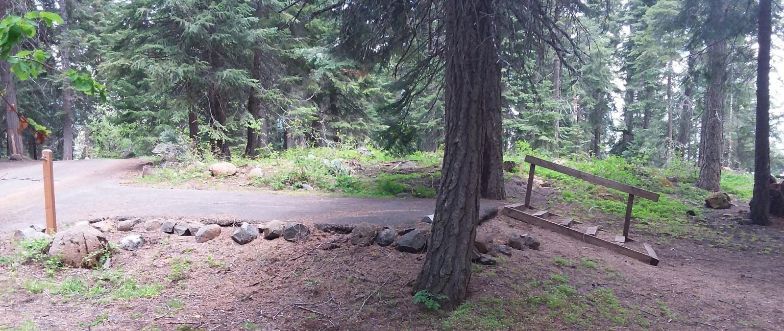 Campsite A13- Hyatt LakeCampsite 13, A Loop Hyatt Lake