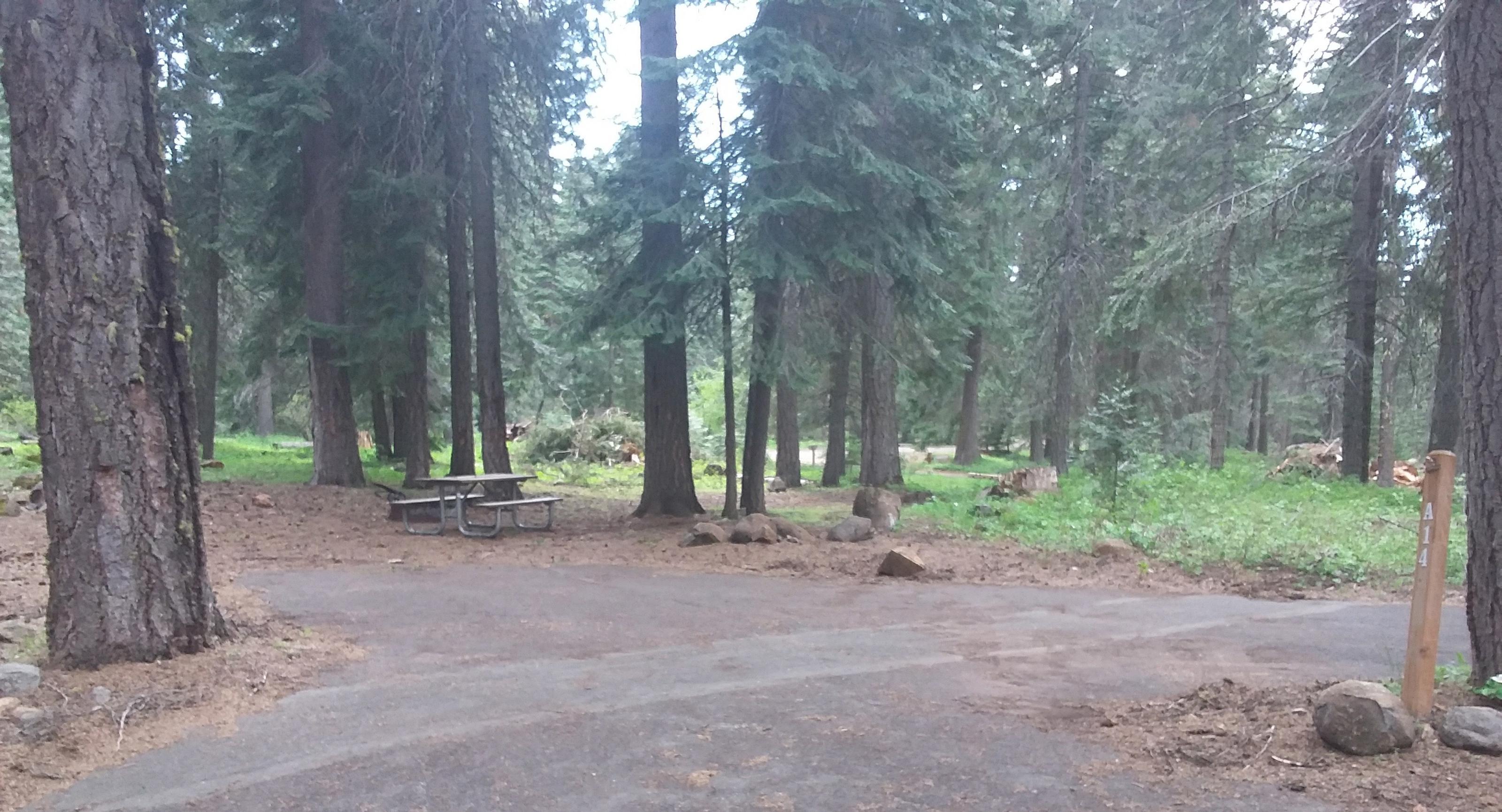 Campsite A14- Hyatt LakeCampsite 14, Loop A Hyatt Lake