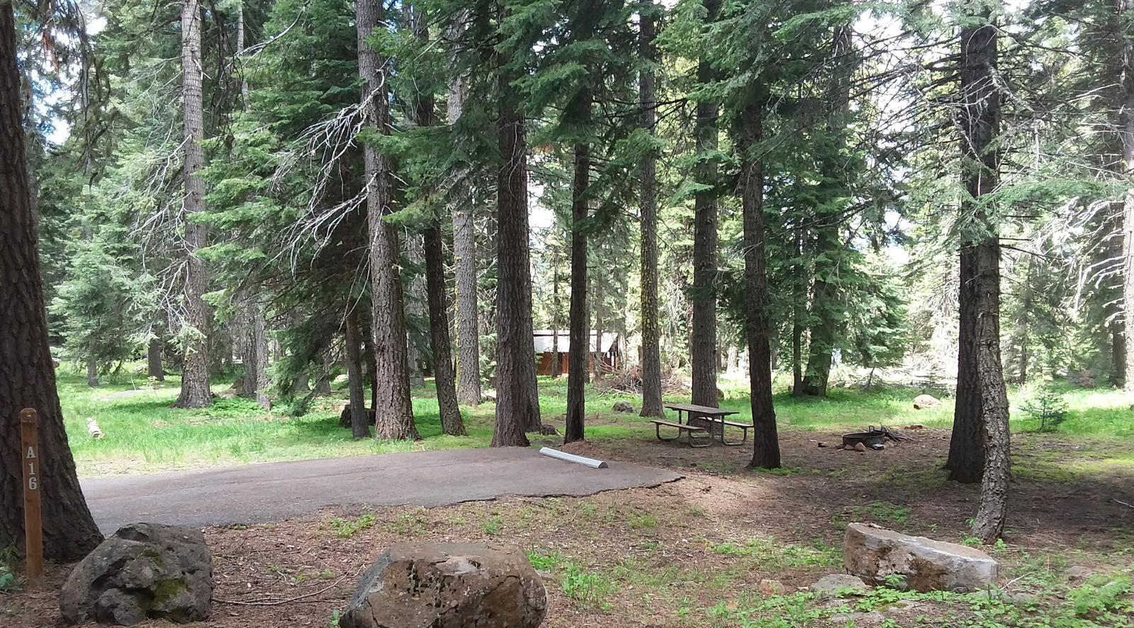 Campsite A16- Hyatt LakeCampsite 16- A Loop Hyatt Lake