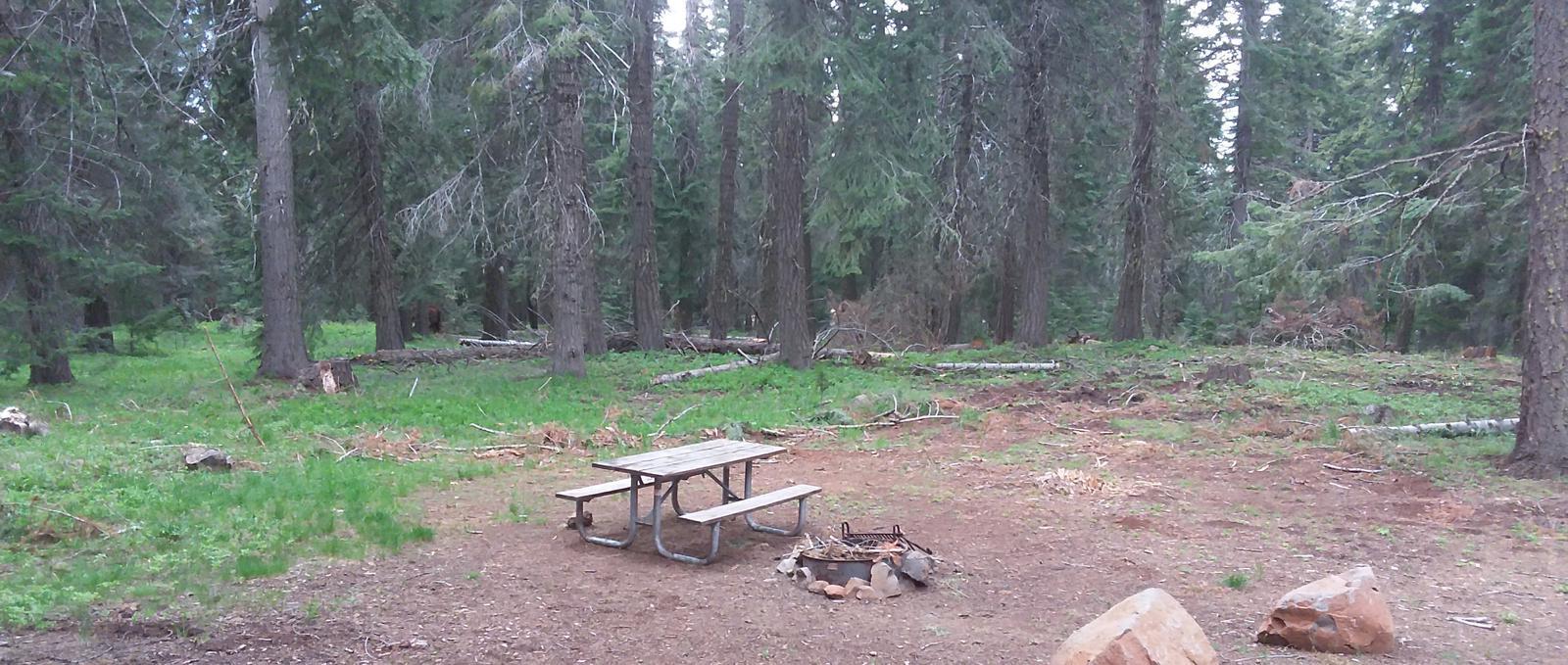 Campsite B17- Hyatt LakeCampsite 17, B Loop Hyatt Lake