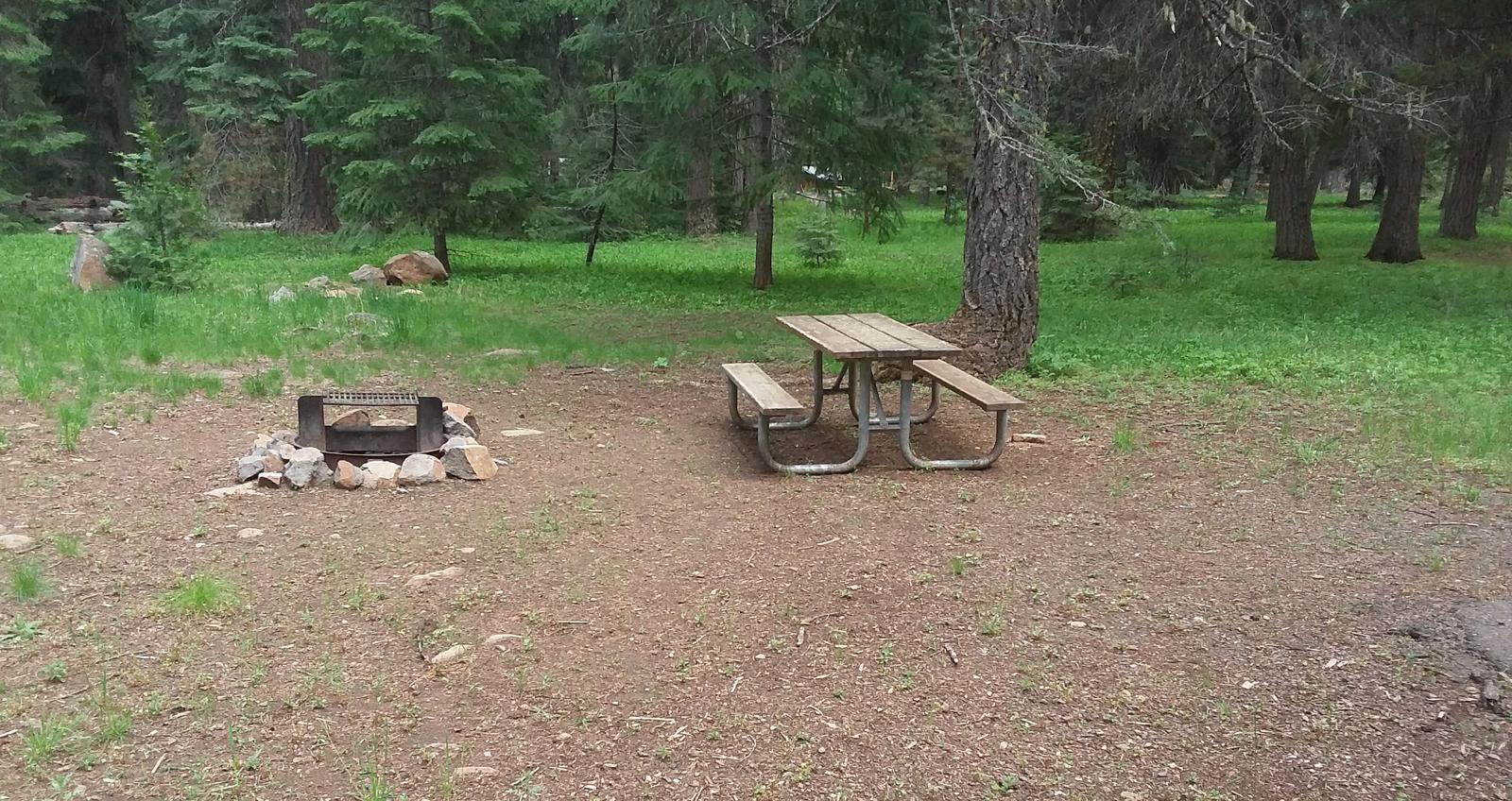 Campsite B19- Hyatt LakeCampsite 19, B Loop Hyatt Lake