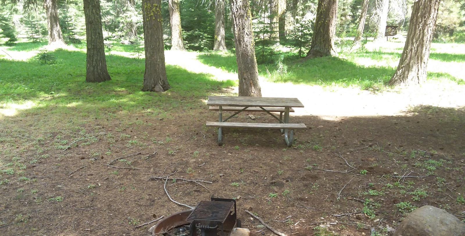 Campsite B21- Hyatt LakeCampsite 21, B Loop Hyatt Lake