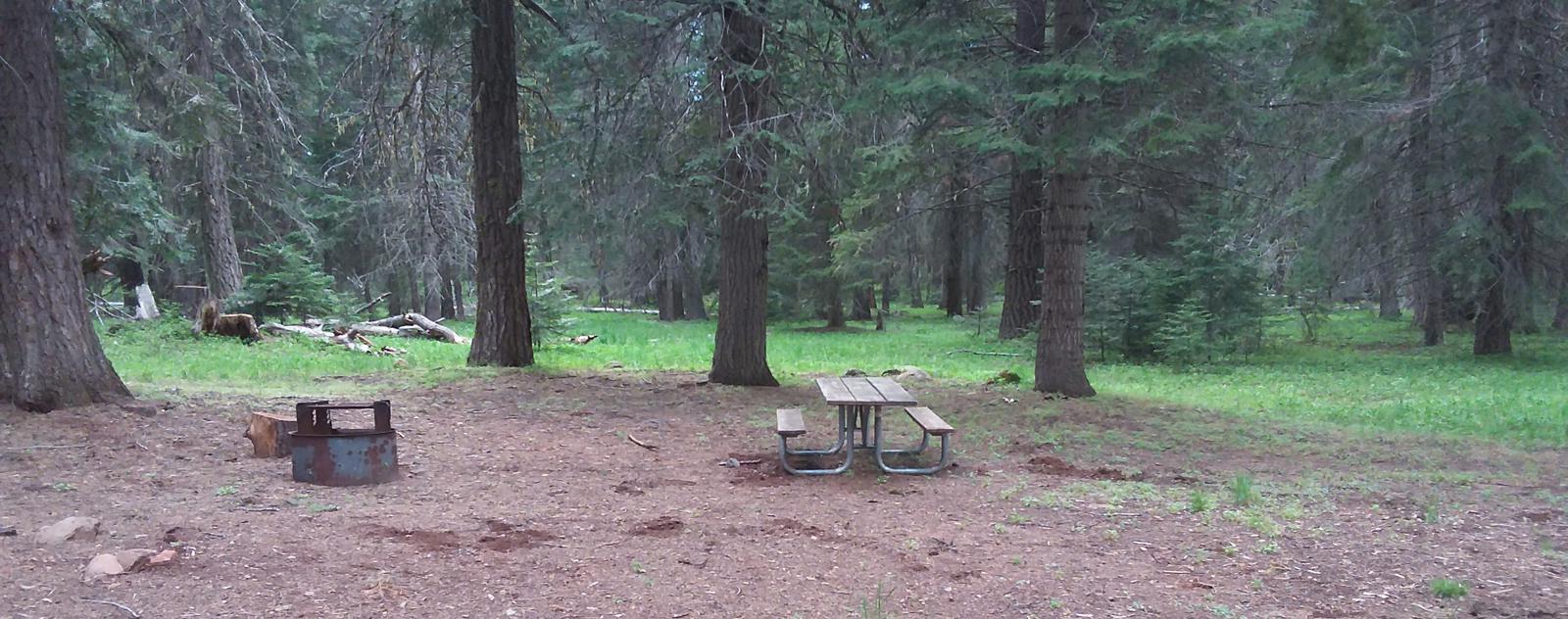 Campsite B22- Hyatt LakeCampsite 22, B Loop Hyatt Lake