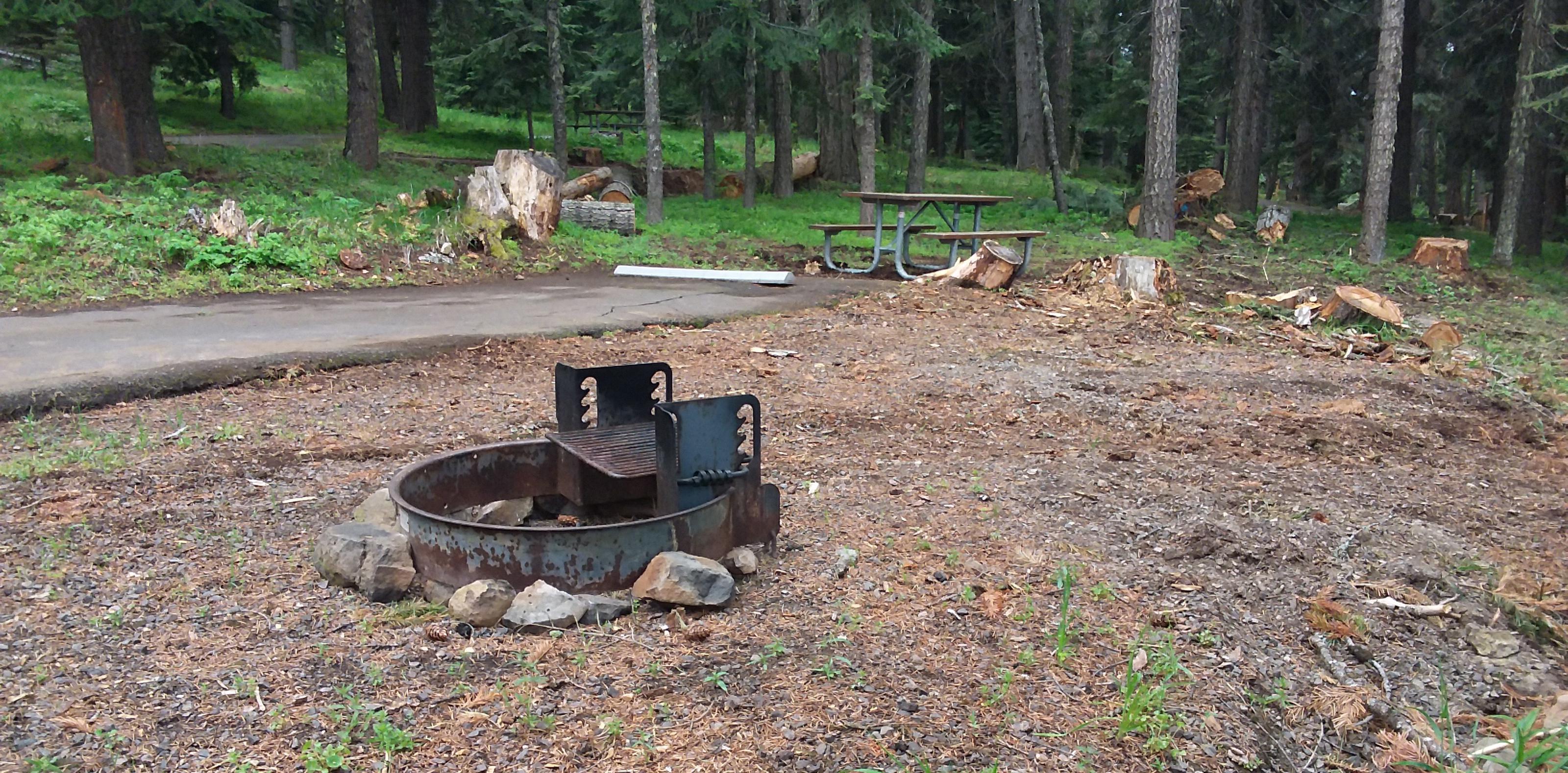 Campsite C35- Hyatt LakeCampsite 35, C Loop Hyatt Lake