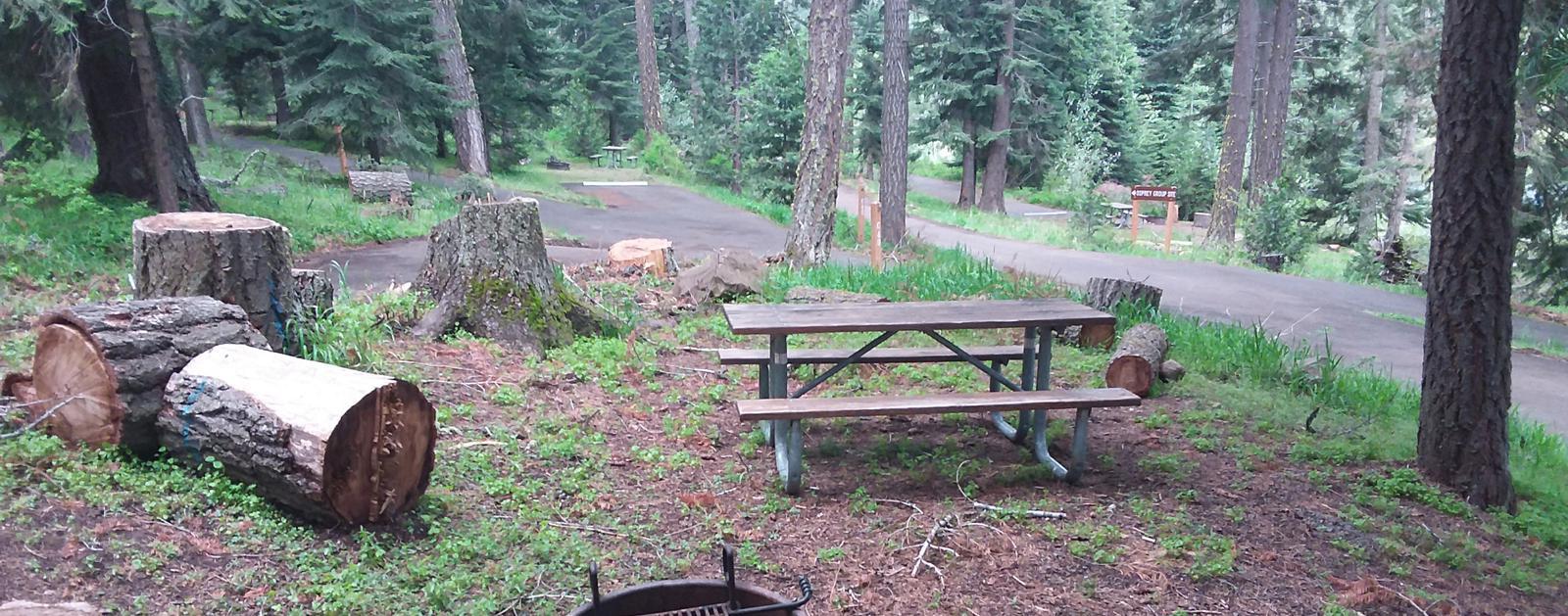 Campsite C40- Hyatt LakeCampsite 40, C Loop Hyatt Lake