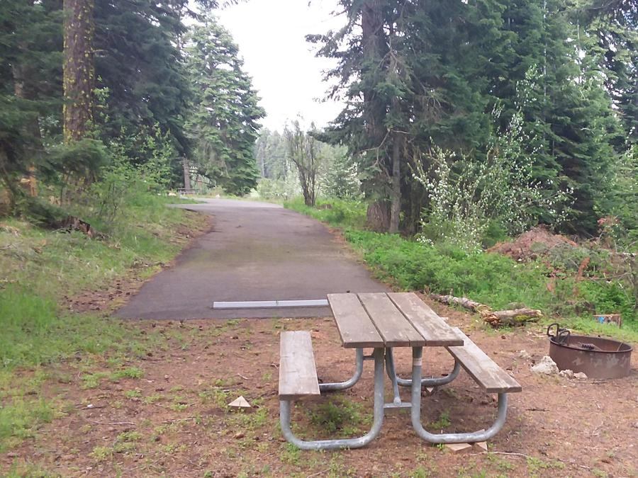 Campsite C43- Hyatt LakeCampsite 43, C Loop Hyatt Lake