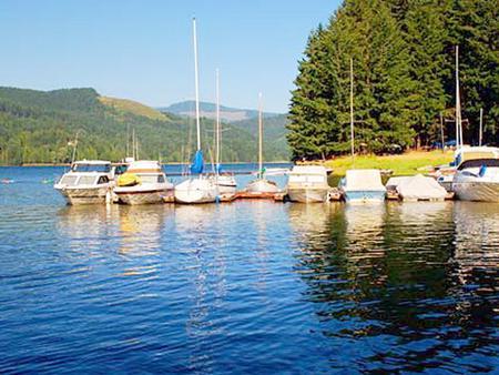Boats docked on the lakeMarina boats on Dorena Lake
