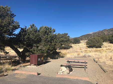 Site #18, Pinon Flats Campground