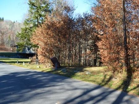 Balsam Mountain Campground Site 2