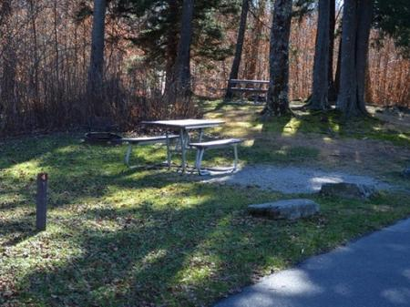 Balsam Mountain Campground Site 4