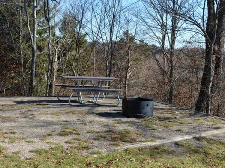 Balsam Mountain Campground   Accessible Site 6