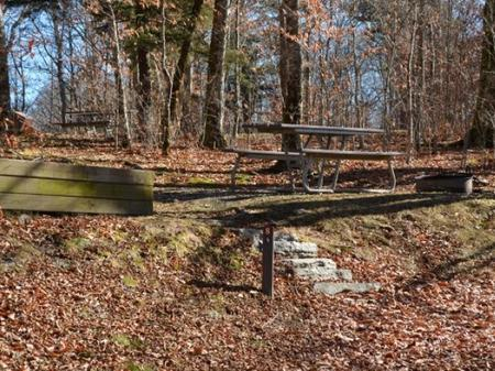 Balsam Mountain Campground Site 8