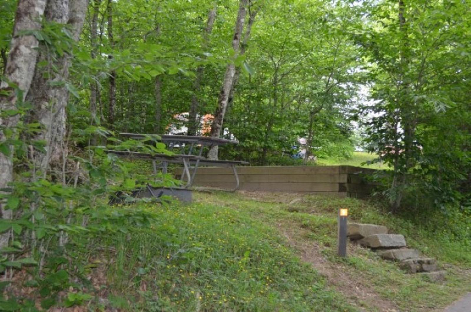 Balsam Mountain Campground Site 9