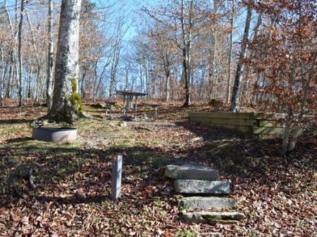 Balsam Mountain Campground Site 9 Walk In