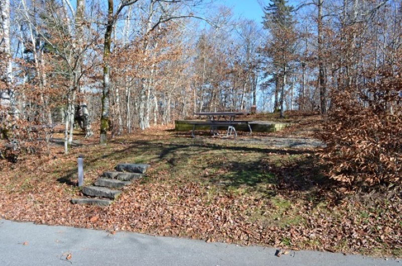 Balsam Mountain Campground Site 10