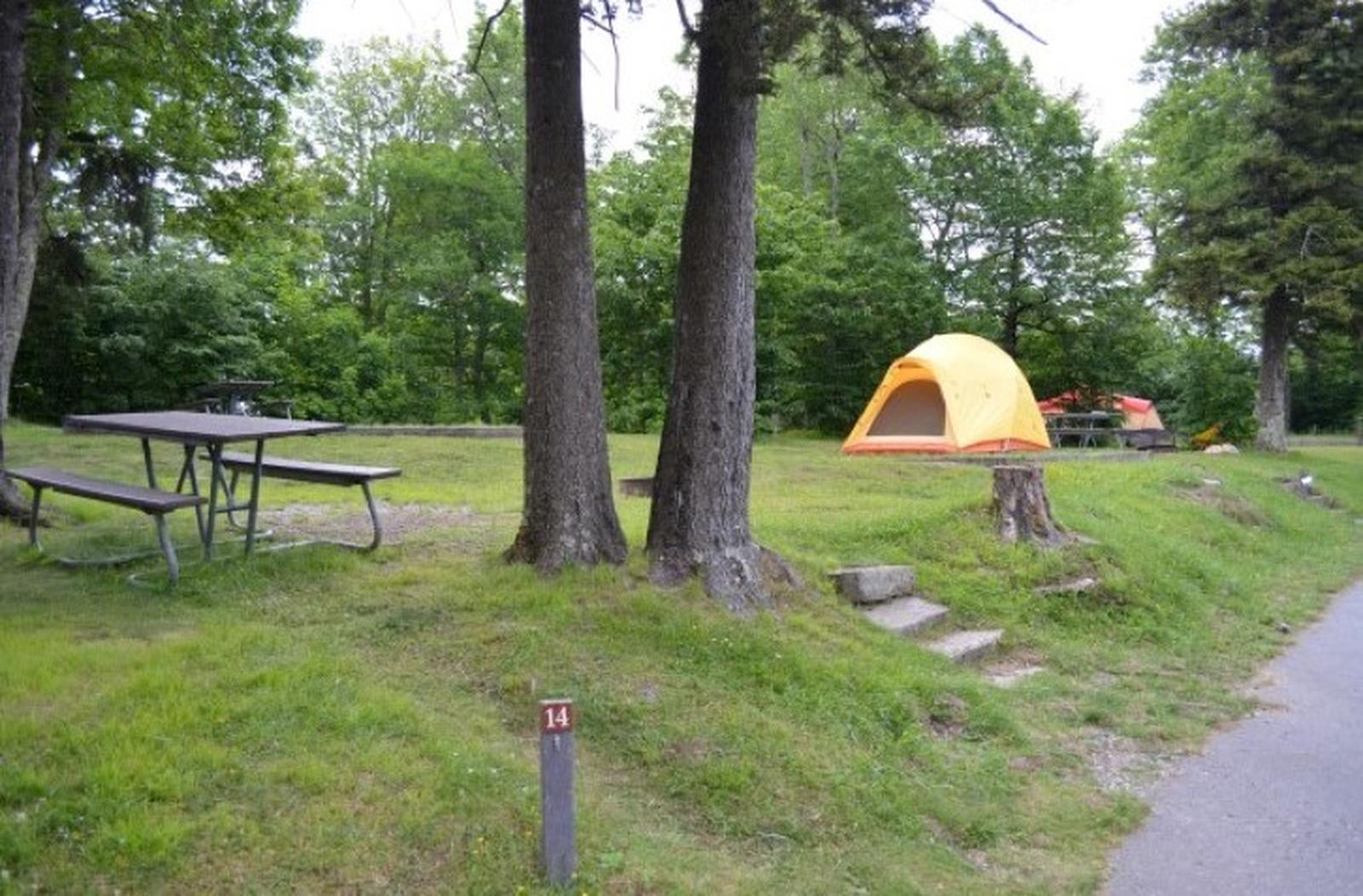 Balsam Mountain Campground Site 14