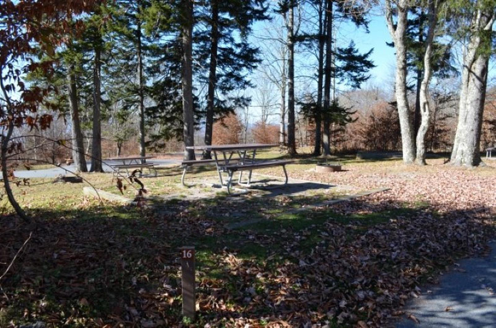 Balsam Mountain Campground Site 16
