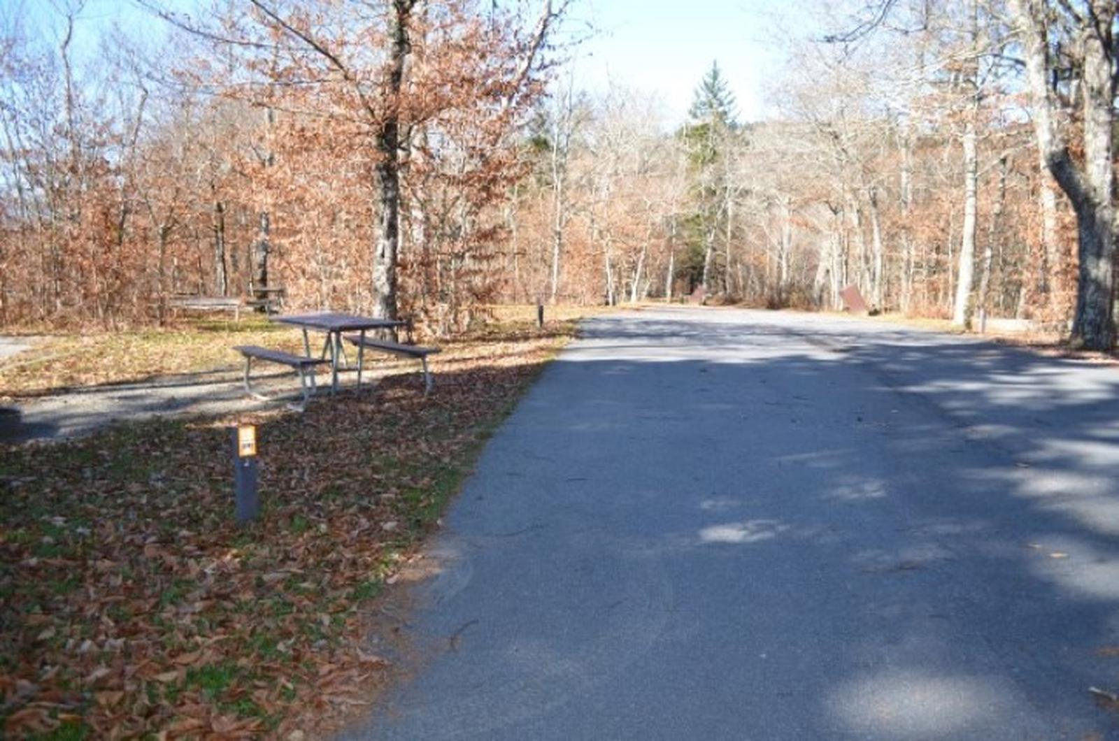 Entrance to SiteBALSAM MOUNTAIN CAMPGROUND