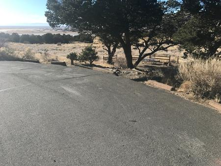 Site #22, Pinon Flats Campground