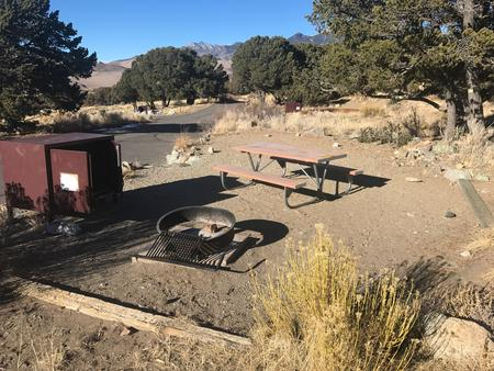 Site #35, Pinon Flats Campground