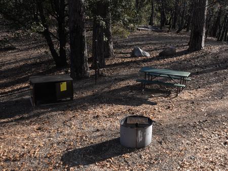 Brandy Creek Campground Site 1