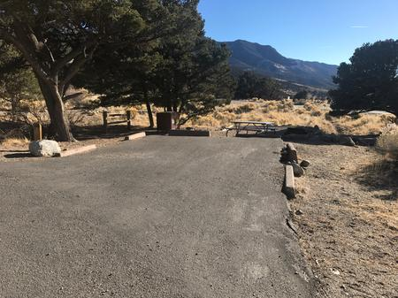 Site #40, Pinon Flats Campground