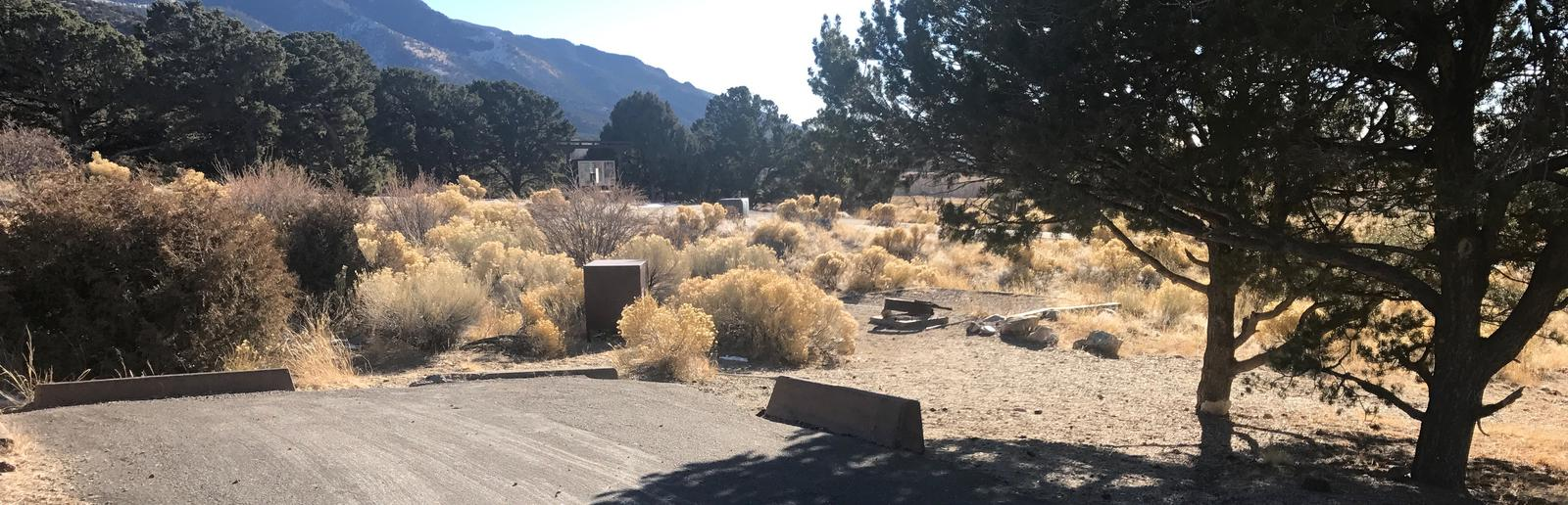 Site #42, Pinon Flats Campground