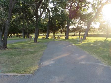 View of campsite 9