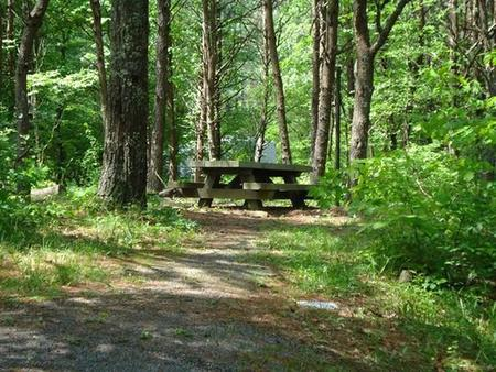 Picnic table behind site.