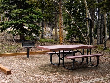 Picnic Table and grill in Circle Park Campground