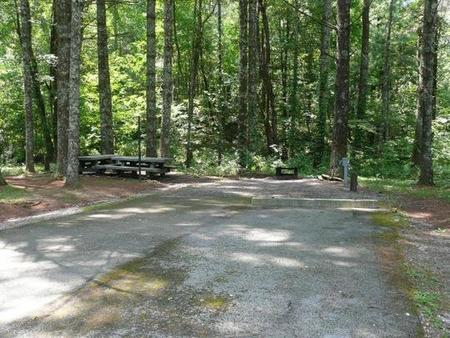 Stony Fork CampgroundNext to campground host site. Close proximity to bath house #2.