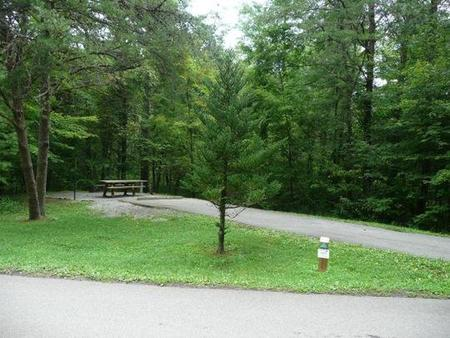 Stony Fork CampgroundClose proximity to bath house #2. Next to gravel path leading to other side of campground.