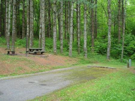 Stony Fork CampgroundSite has a slight grade to picnic area.