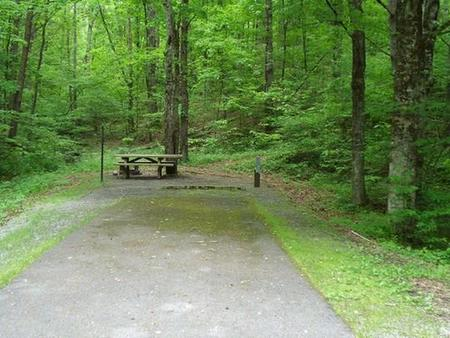 Stony Fork CampgroundShaded site next to Stony Fork Nature Trail. Close proximity to bath house #3.