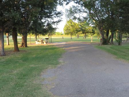 View of campsite 72