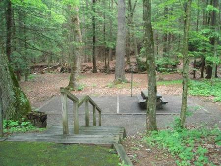 Secluded site with stairsCreek and woods