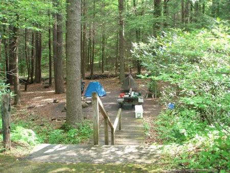 Secluded tent site with stairsCreek and woods
