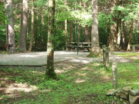 Level double tent siteLevel double tent site with woods